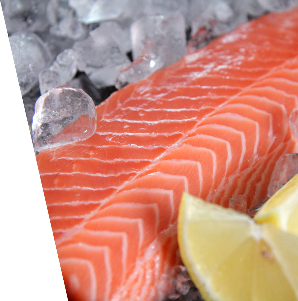 Salmon Fillet New